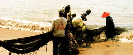 vissers.jpg